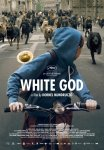 white_god-ENG-cannes